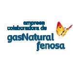 EMPRESA COLABORADORA DE GAS NATURAL FENOSA